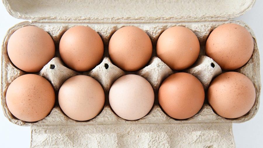 10個の卵