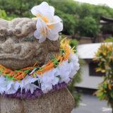 minoaka [mino'aka](ミノアカ)